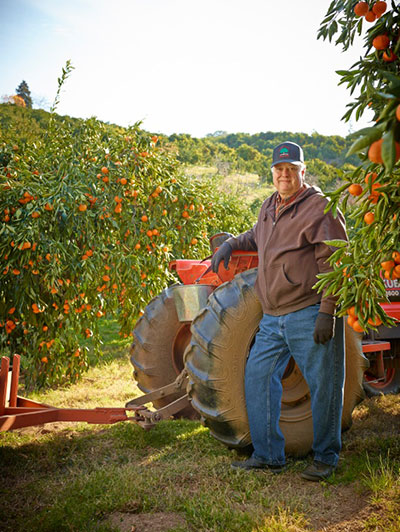 Tom Aguilar, Mandarin Hill Orchards